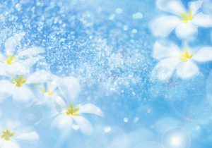 Most-beautiful-flower-wallpapers-technology-understands-you